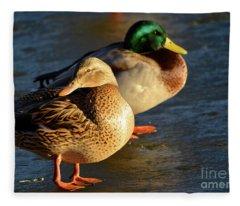 Duck Pair Sunbathing On Frozen Lake Fleece Blanket