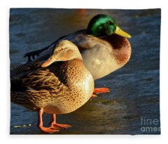 Duck Pair Sunbathing On Frozen Lake Fleece Blanket
