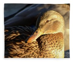 Duck Sunbathing Fleece Blanket