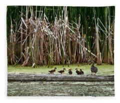 Ducks All In A Row Fleece Blanket