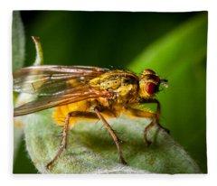 Dung Fly On Leaf Fleece Blanket