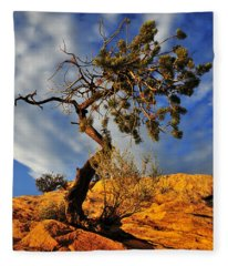 Dusk Dance Fleece Blanket