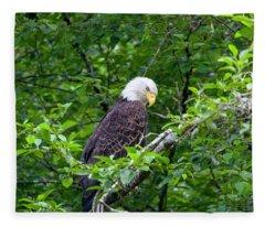 Eagle In The Tree Fleece Blanket