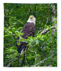 Eagle In Tree Fleece Blanket