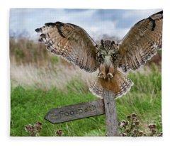 Eagle Owl On Signpost Fleece Blanket