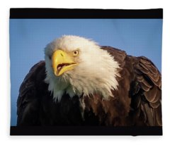 Eagle Stare 2 Fleece Blanket