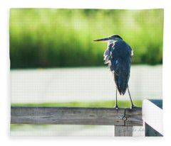 Early Morning Great Blue Heron Fleece Blanket