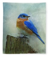 Eastern Bluebird II Fleece Blanket