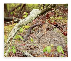 Eastern Cottontail Rabbit Fleece Blanket