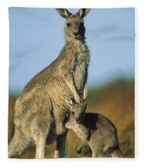 Eastern Grey Kangaroo And Her Joey Fleece Blanket