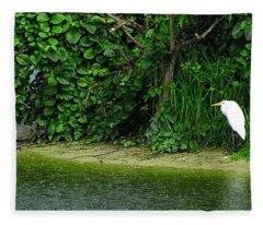 Egret Wakodahatchee Florida Wetlands Fleece Blanket
