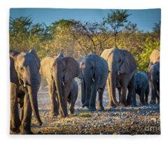 Eight Elephants Fleece Blanket