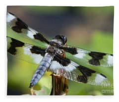 Eight-spotted Skimmer  Fleece Blanket