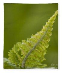 Elegant Fern. Fleece Blanket