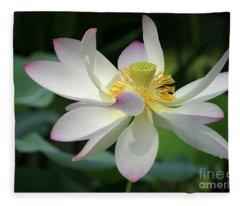 Elegant Lotus Fleece Blanket