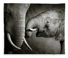 Elephant Affection Fleece Blanket
