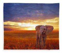 Elephant Baby Fleece Blanket