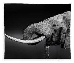 Elephant Bull Drinking Water Fleece Blanket