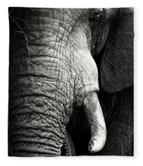 Elephant Close-up Portrait Fleece Blanket