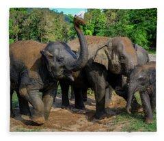 Elephant Cool Down Fleece Blanket