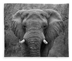 Elephant Eyes - Black And White Fleece Blanket