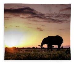 Elephant In Olpejeta Fleece Blanket
