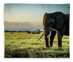 Elephant Near Mt Kenya Fleece Blanket