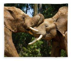 Elephant Play 2 Fleece Blanket