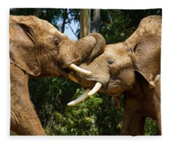 Elephant Play 2 Fleece Blanket