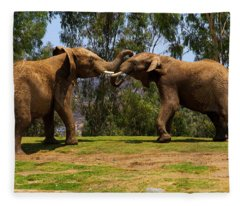Elephant Play 3 Fleece Blanket