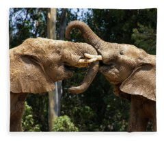 Elephant Play Fleece Blanket