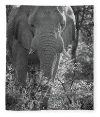 Elephant Portrait Fleece Blanket
