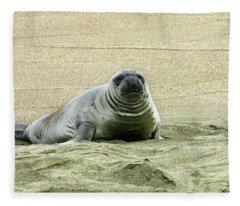 Elephant Seal Pup Fleece Blanket