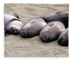 Elephant Seals Fleece Blanket