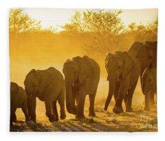 Elephant Sunset Fleece Blanket