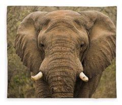Elephant Watching Fleece Blanket