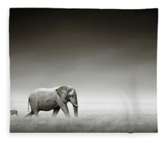 Elephant With Zebra Fleece Blanket