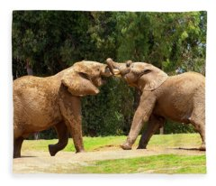 Elephants At Play 2 Fleece Blanket