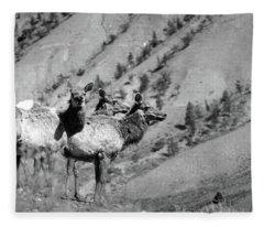 Elk 19 Fleece Blanket