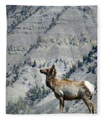 Elk 20 Fleece Blanket