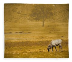 Elk Fleece Blanket