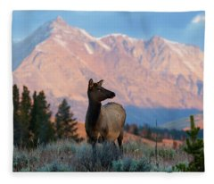 Elk Majesty Fleece Blanket