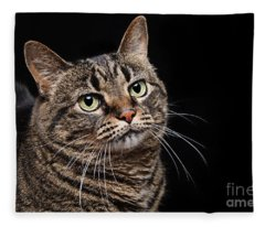 Emmy The Cat Ponder Fleece Blanket