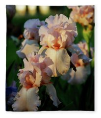 End Of Day Pink Irises 6702 H_2 Fleece Blanket