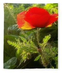 Red Poppy At Sunset Fleece Blanket