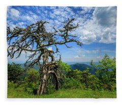Ent At The Top Of The Hill - Color Fleece Blanket