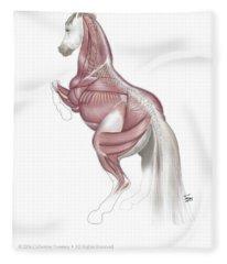 Equine Levade Fleece Blanket