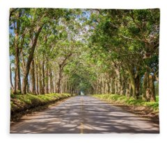 Eucalyptus Tree Tunnel - Kauai Hawaii Fleece Blanket