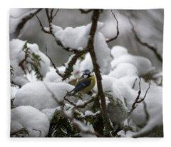 Eurasian Blue Tit In Winter 22 Fleece Blanket