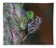Eurasian Treecreeper, Certhia Familiaris Fleece Blanket